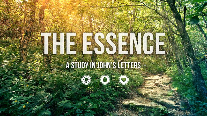 the-essence